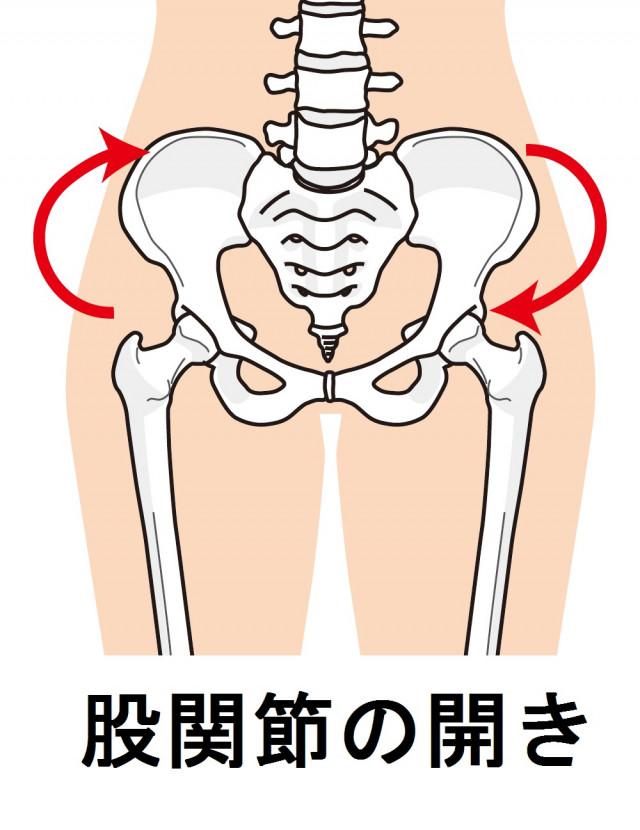股関節の開き きりん接骨院